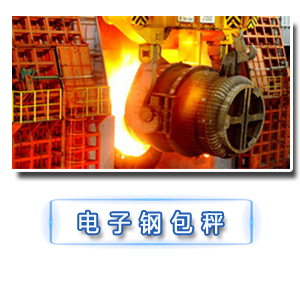 OCS—PT系列电子钢包秤